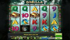 Gorilla Novomatic Slots